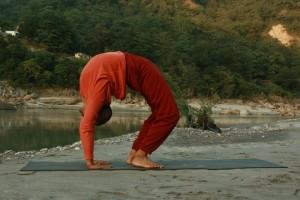 Yoga Posture 12