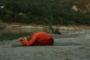 Yoga Posture 14