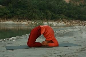 Yoga Posture 27