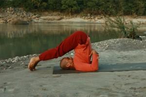 Yoga Posture 9